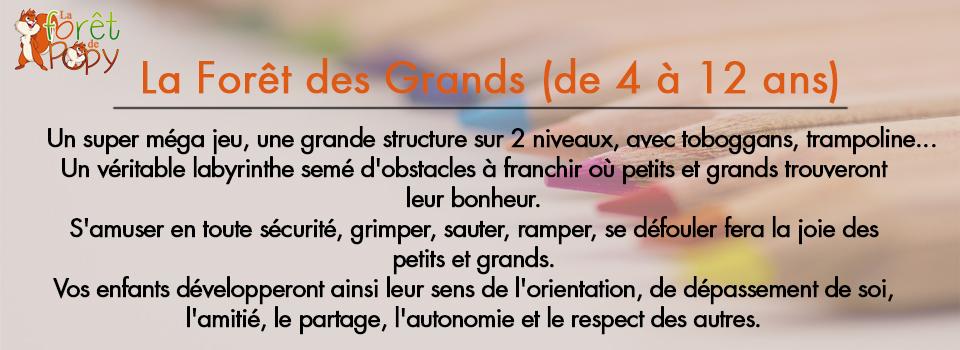 text-slide5
